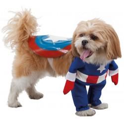 Déguisement Captain America pour Chien