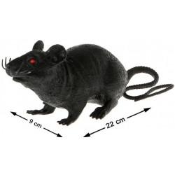 Rat Noir Halloween