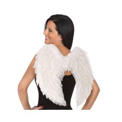 Ailes Ange Plumes Blanches